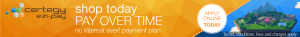 certegy ezi-pay banner